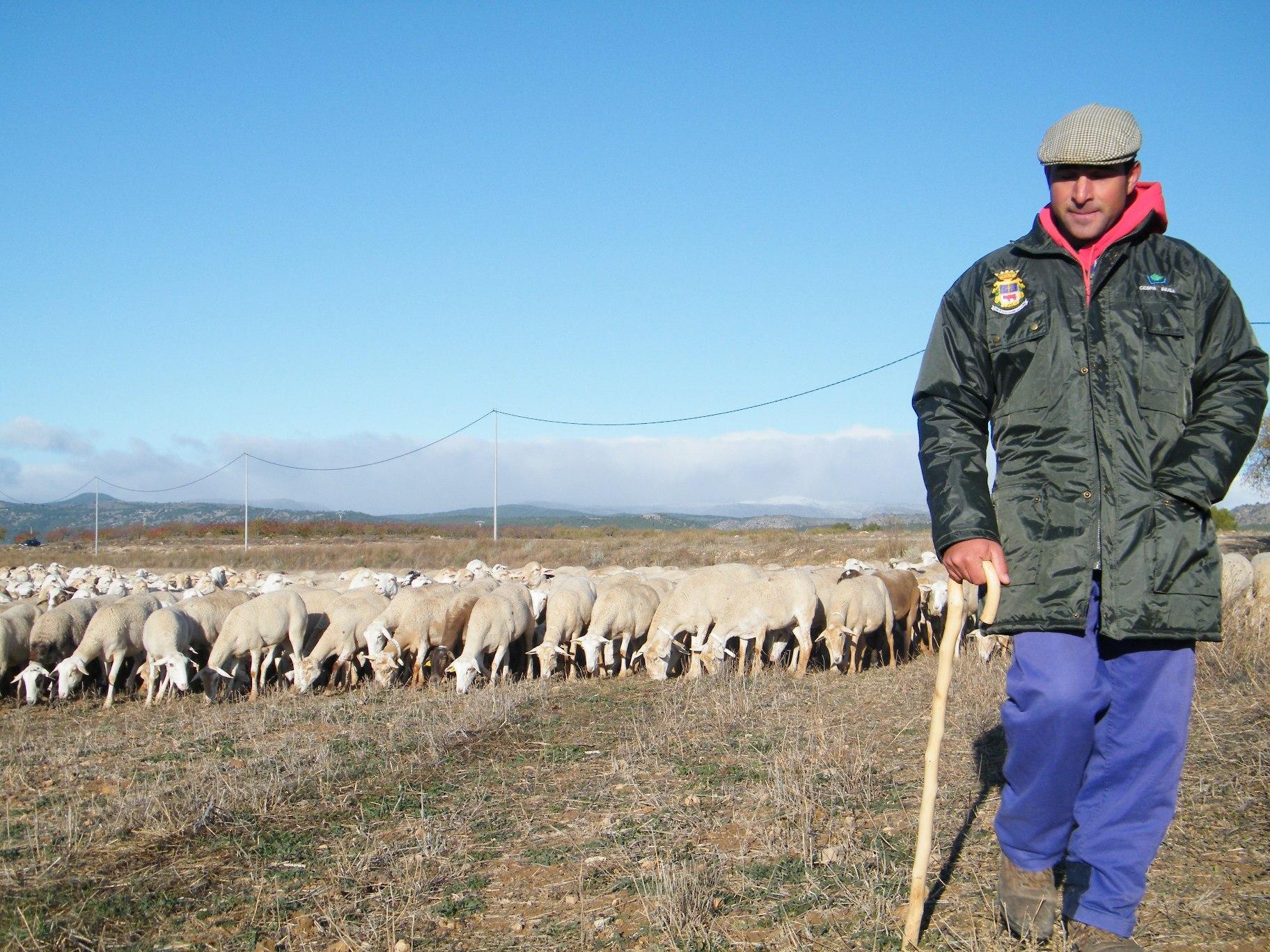 La ganadería y la transhumancia en Caravaca